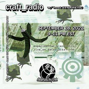 craft radio w/ synkretic